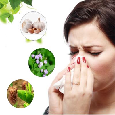 3 bài thuốc dân gian chữa xoang mũi hiệu quả chẳng mất tiền